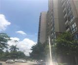 松岗大型村委统建楼,12栋1200户,1.1万/平,送装修