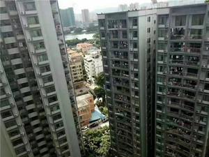 沙井17栋大型村委统建楼,均价12800元/平,首付5成,分期5年,带地下车库