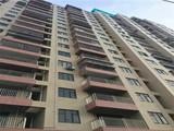 东莞长安振安明府,两栋21层,4600元/平起,带装修,首付5成,分期6年
