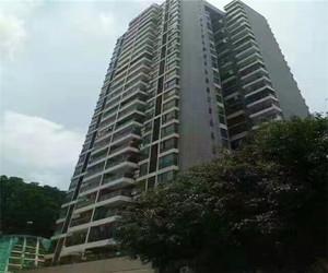 石岩村委统建楼,12800元/平起,首付5成,分期5年,地铁口300米